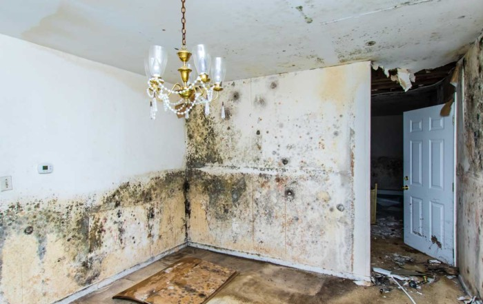 7 Common Misconceptions About Water Damage Repair